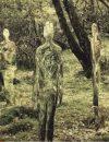 Entităţi stranii din altă lume surprinse în pădurile din Chile