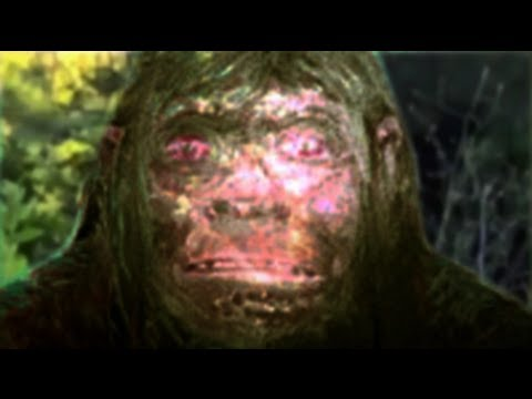Neanderthalieni au supravieţuit şi sunt printre noi