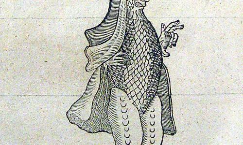 Pare_Bishop_shaped_fish